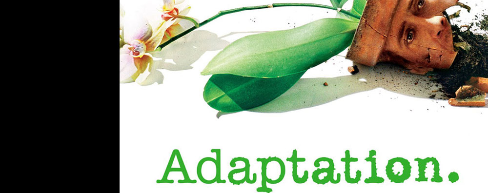 AdaptationFI